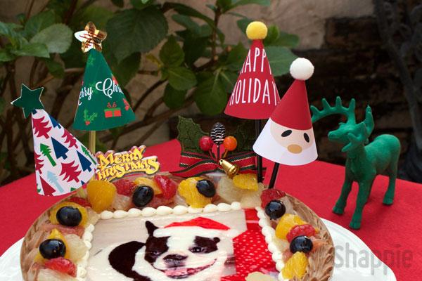 クリスマスケーキトッパー_shappie
