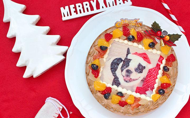 写真ケーキのクリスマスケーキ